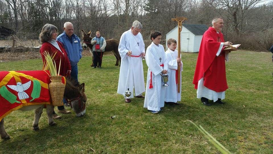 images stcpalmsunday